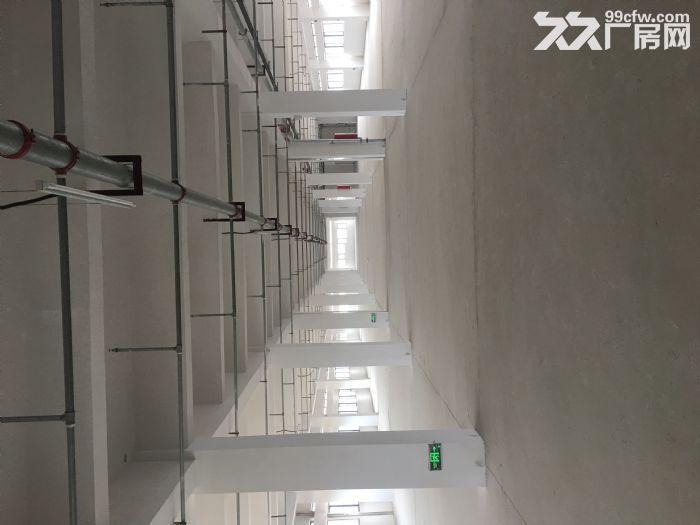 出租国际标准新厂房每层面积1000−3000平不等-图(5)