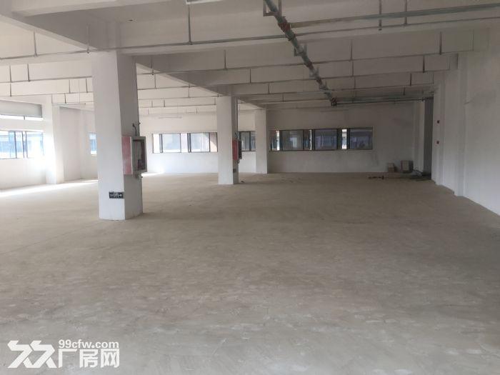 出租国际标准新厂房每层面积1000−3000平不等-图(6)
