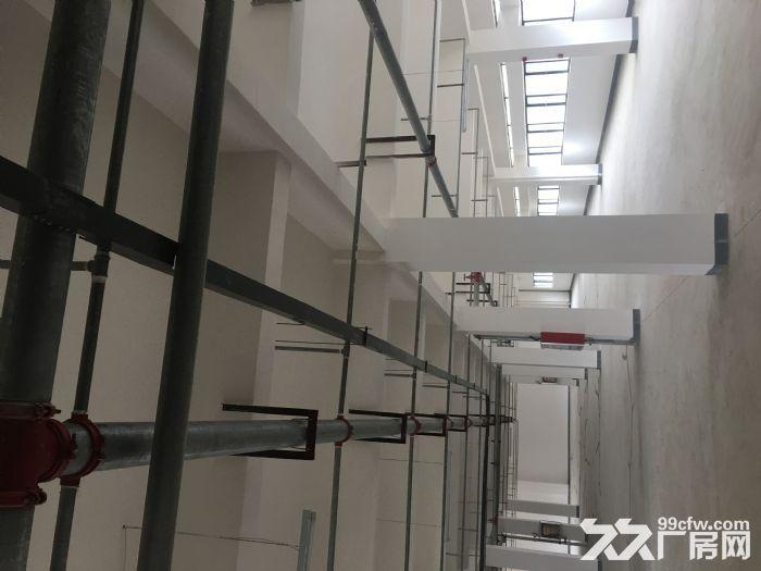 出租国际标准新厂房每层面积1000−3000平不等-图(7)