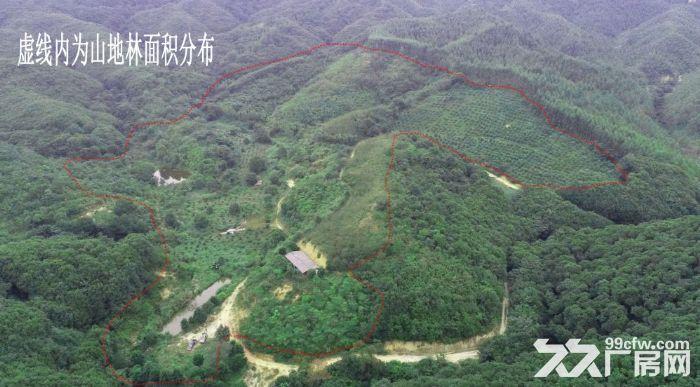 广州从化区龙潭水库旁140亩山地林出售-图(2)