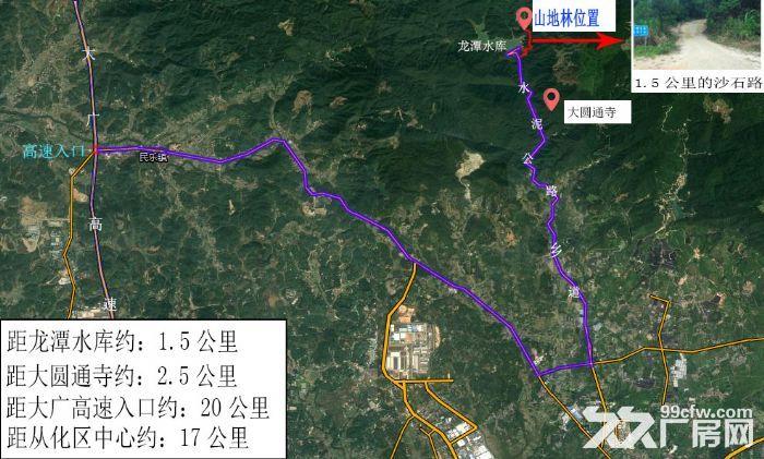 广州从化区龙潭水库旁140亩山地林出售-图(4)