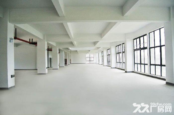 松江科技园小面积608平证件齐全精装修园区形象好-图(4)