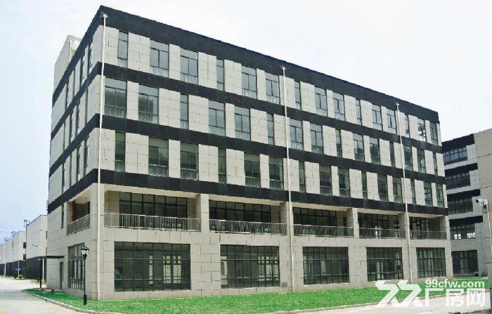松江科技园小面积608平证件齐全精装修园区形象好-图(8)