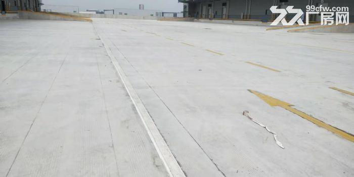 物流园12万平米高标库可以分租消防丙二类-图(1)