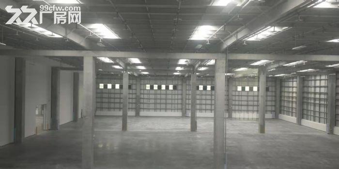 物流园12万平米高标库可以分租消防丙二类-图(4)