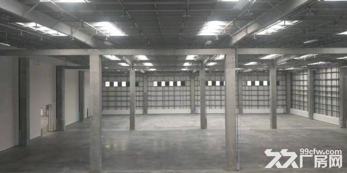 物流园12万平米高标库可以分租消防丙二类-图(5)