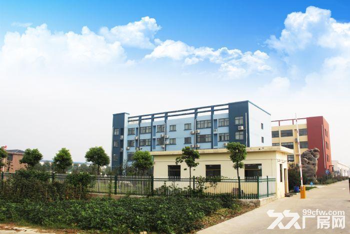 1300平米厂房出租-图(3)