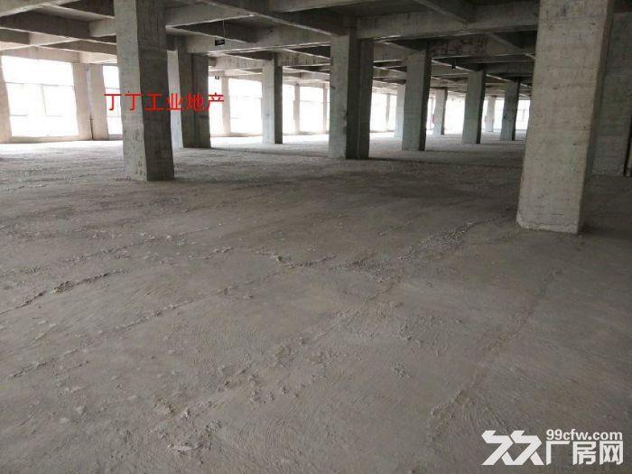 灞桥区现代纺织产业园手续齐全标准厂房10000平可分割-图(7)
