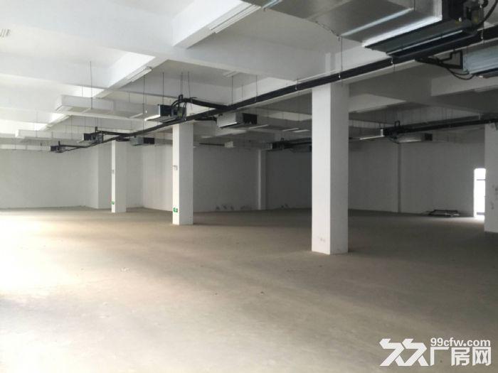 雨山区1580平标准厂房仓库出租配套完善物流价优-图(1)