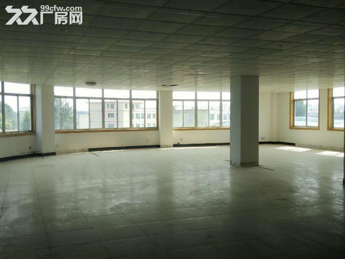 莱山厂房带院,出租出售,-图(2)