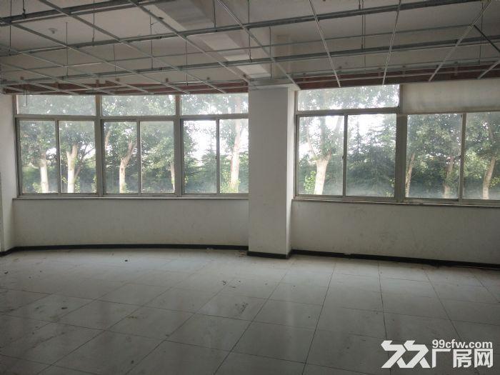 莱山厂房带院,出租出售,-图(5)