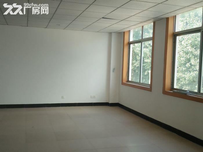 莱山厂房带院,出租出售,-图(6)