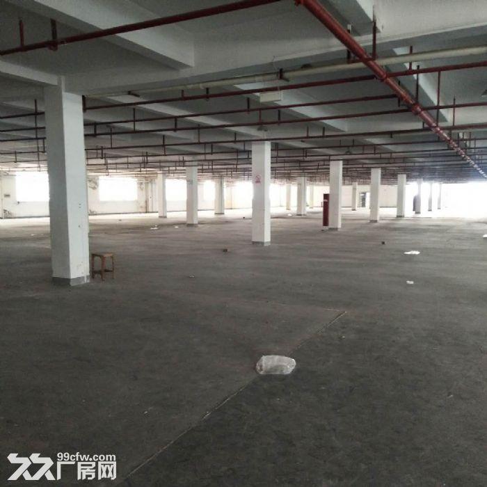 嘉善惠民工业园3000方多层厂房出租可挂道具,家具-图(1)
