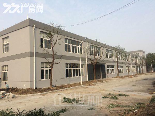 东阳南马工业区标准钢结构出租-图(1)