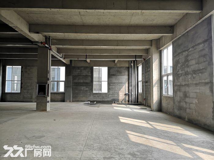 出售1187平方厂房50年独立产权可环评-图(2)