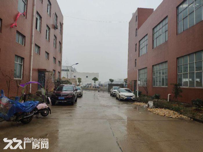 武汉阳逻经济开发区2000平米独栋钢构厂房出售-图(3)