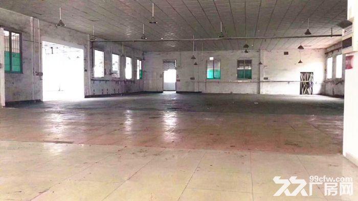 石基1625方简易厂房,还价即租,可办环评-图(4)