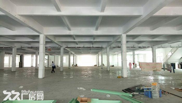 清溪三中独院厂房大小分租近高速空地超大形象好-图(1)