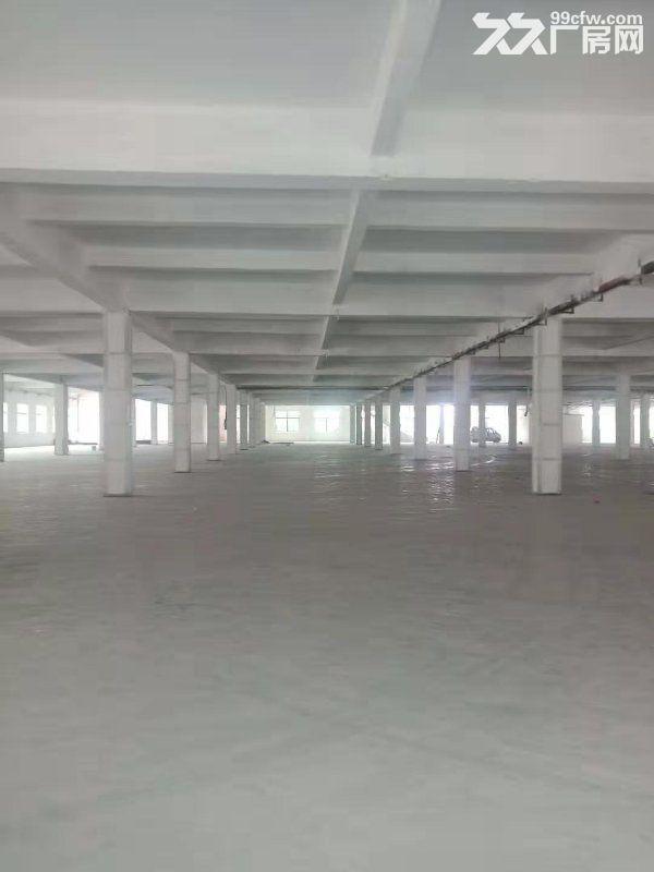 清溪三中独院厂房大小分租近高速空地超大形象好-图(2)