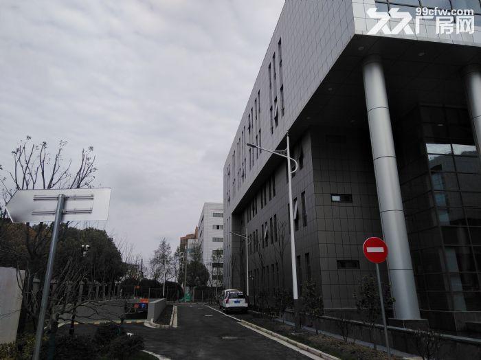 浦东临街4000平,双层可分租,环评可做,适合汽车展厅售后维保-图(1)