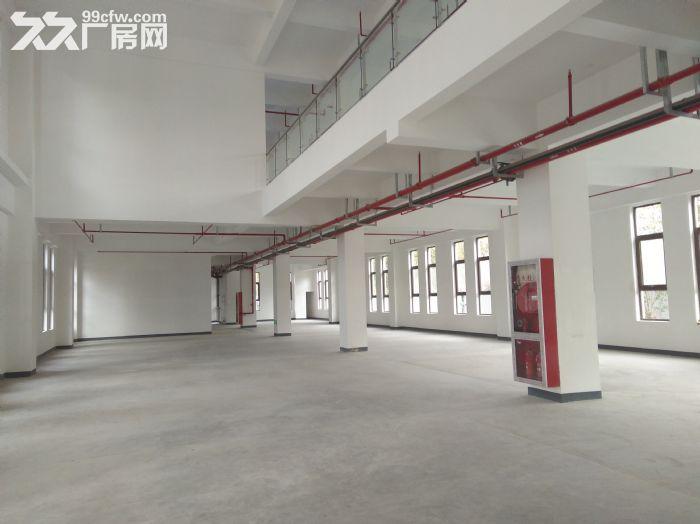 浦东临街4000平,双层可分租,环评可做,适合汽车展厅售后维保-图(2)