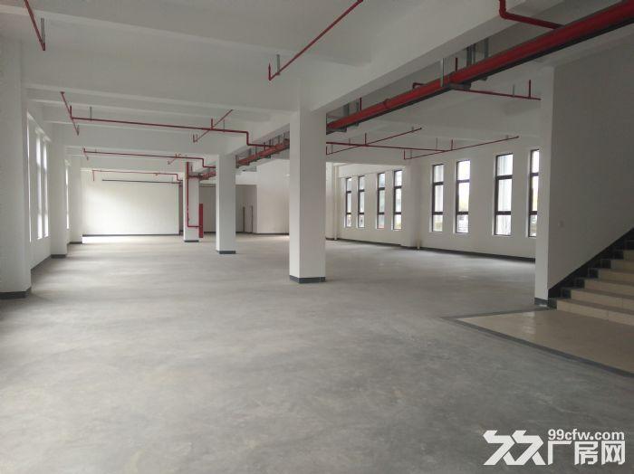 浦东临街4000平,双层可分租,环评可做,适合汽车展厅售后维保-图(3)