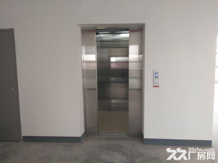 浦东临街4000平,双层可分租,环评可做,适合汽车展厅售后维保-图(4)