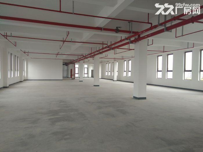 浦东临街4000平,双层可分租,环评可做,适合汽车展厅售后维保-图(5)