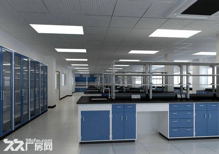 (出租)张江自贸区生物医药化学药品设备研发办公实验室出租.环评可做1500平分-图(4)