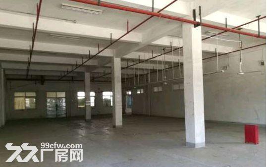 底楼层高6米!张江1500平米可分割可环评厂房仓库-图(1)