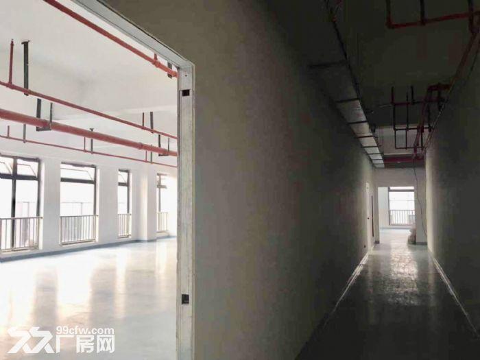 (出租)张江890至6500平独栋研发中心生物医药中试!医药医械等组装研发-图(5)