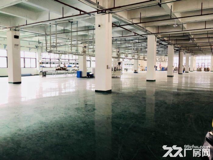 寮步新出一手房东厂房1−2层2400平方-图(2)