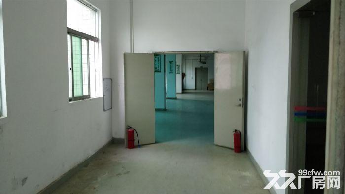 凤岗黄洞楼上带装修厂房出租1000平方,水电现成的-图(3)