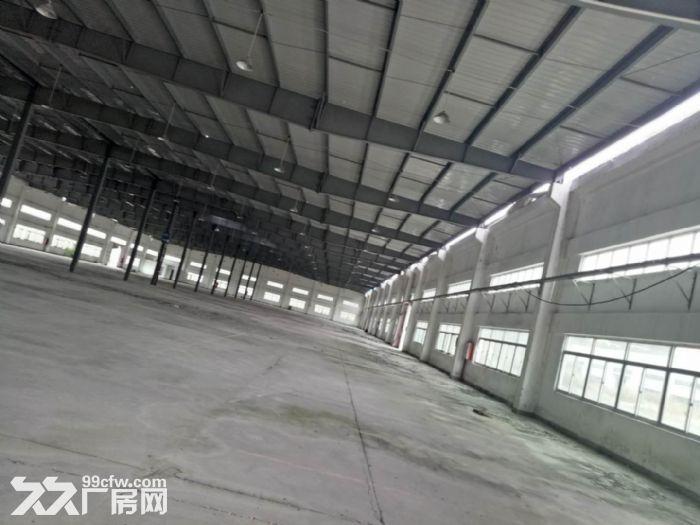 晋江独门独院8000平方钢结构招租-图(1)