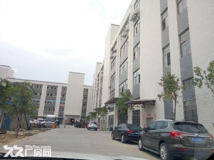 翔安独门独院40000平方标准厂房出租-图(1)