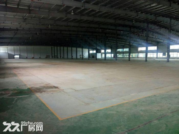 同安独门独院钢结构厂房60000平方招商-图(1)