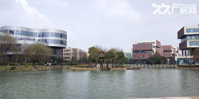 联东U谷600到3600m²厂房出售,50年产权可按揭可环评,稀缺独栋-图(5)