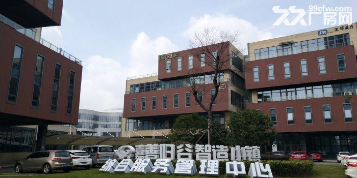 联东U谷600到3600m²厂房出售,50年产权可按揭可环评,稀缺独栋-图(8)