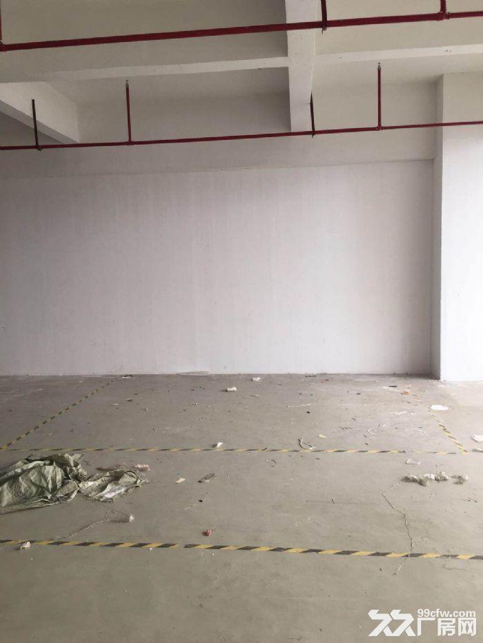 大港104板块1300平仓库出租,环.评已办好-图(2)