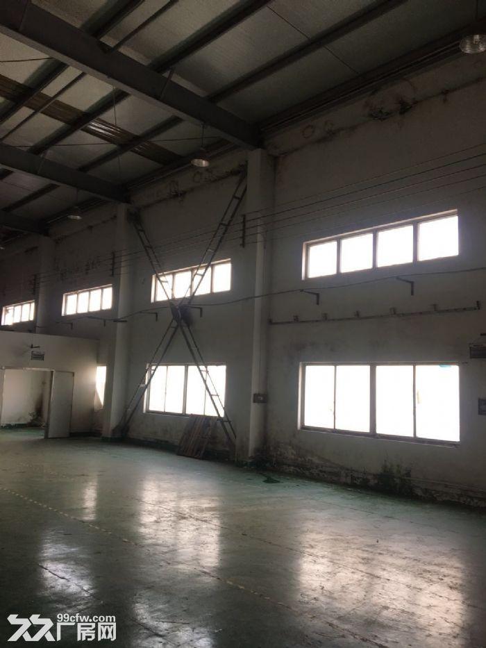 康园路附近,104地块,6300平方单层厂房,仓库可分租-图(3)