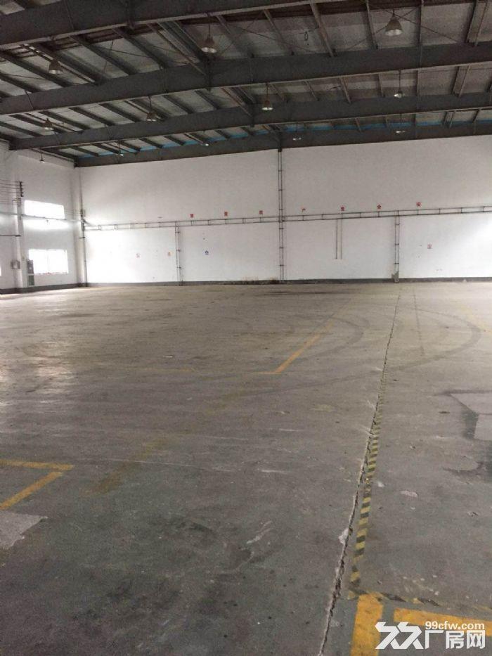 康园路附近,104地块,6300平方单层厂房,仓库可分租-图(4)