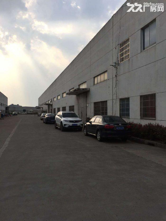康园路附近,104地块,6300平方单层厂房,仓库可分租-图(5)