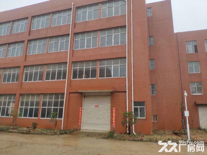 武汉阳逻经济开发区2000平米独栋钢构厂房出售-图(4)
