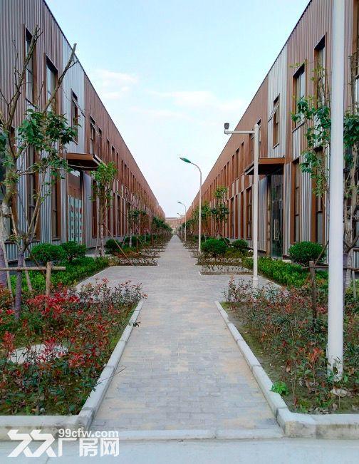 金华开发区金西工业园标准厂房招商多种面积可选-图(5)
