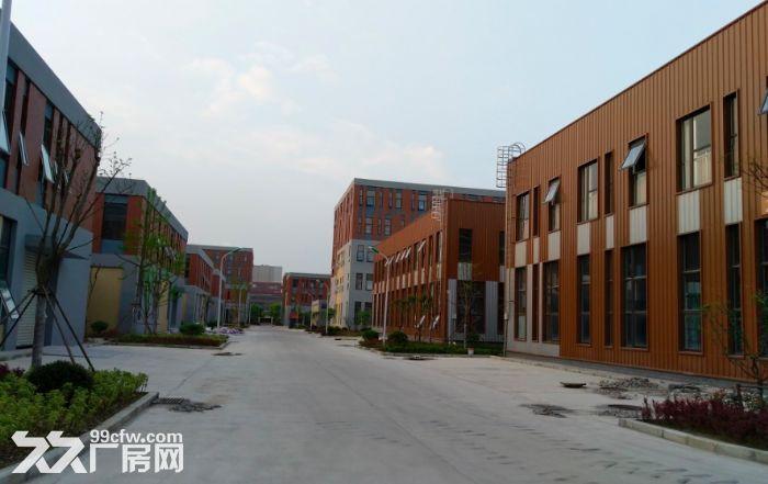 金华开发区金西工业园标准厂房招商多种面积可选-图(7)
