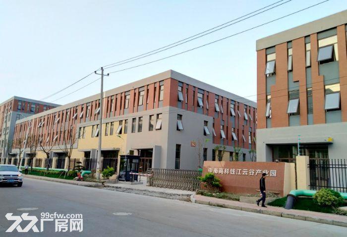 金华开发区金西工业园标准厂房招商多种面积可选-图(8)