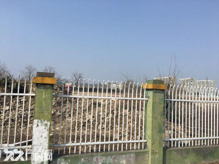 蓬朗镇3亩空地出租,园区场地大,欢迎咨询-图(1)