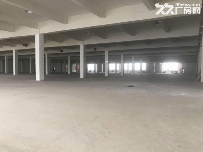 海陵工业园共建区标准厂房招租-图(1)