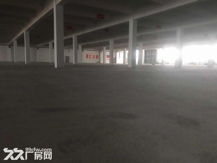 海陵工业园共建区标准厂房招租-图(3)