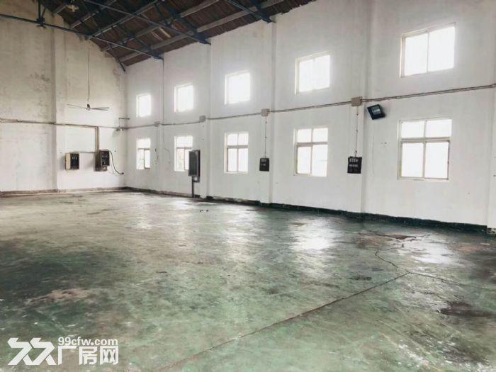 三鲁路独门独院4200平方米-图(1)